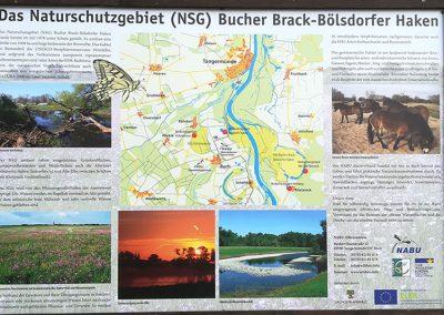 Naturkundliche Informationstafel in Buch